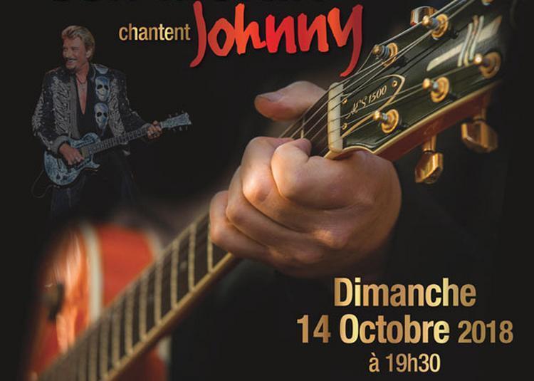 Dãzner Concert : Johnny Hallyday à Challes les Eaux