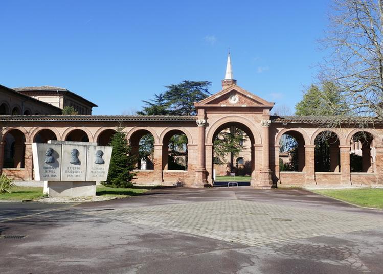 De Braqueville à Marchant, 150 Ans D'histoire à Toulouse
