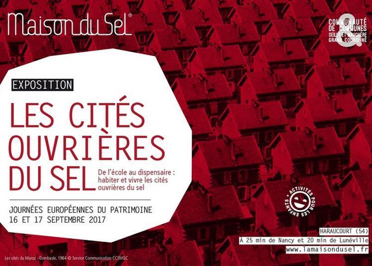 De L'école Au Dispensaire : Habiter Et Vivre Les Cités Ouvrières Du Sel à Haraucourt