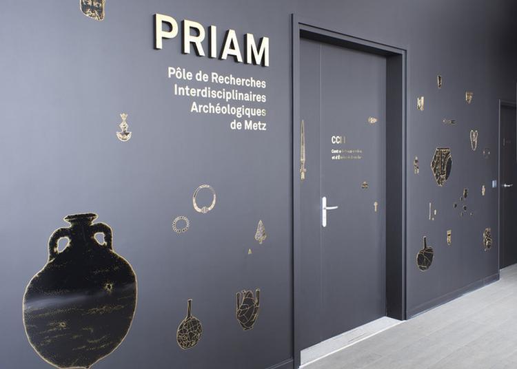 De La Fouille Au Musée : Parcours Du Mobilier Archéologique En Lorraine à Metz