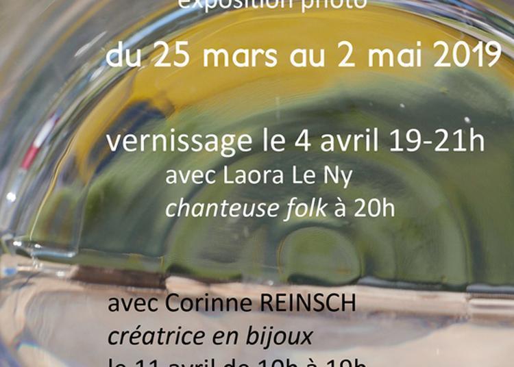 De la vigne au verre (Vineyard by glass) à Bordeaux