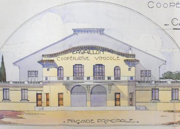 De La Vigne Au Vin : La Cave Coopérative Des Vignerons De Cavaillon (1924-1986).