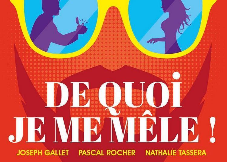 De Quoi Je Me Mele ! à Nantes