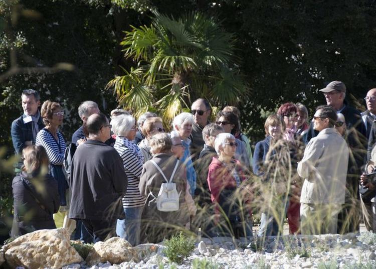 Déconstruire La Ville - « Quimper, Il N'y A Que Des Pavés » : Les Jardins De La Retraite Et De La Paix