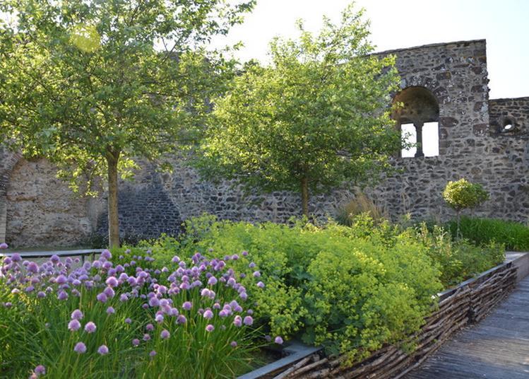 Découpe De Plantes Médicinales à Mayenne