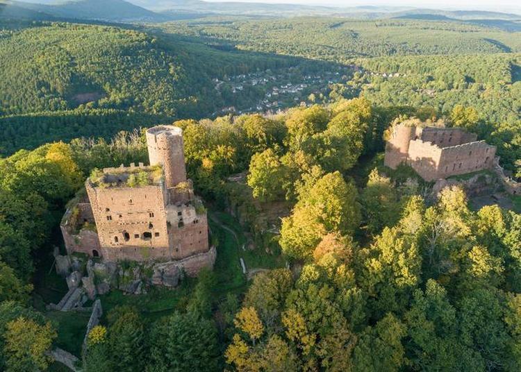 Découverte Authentique Des Châteaux Forts D'alsace à Ottrott