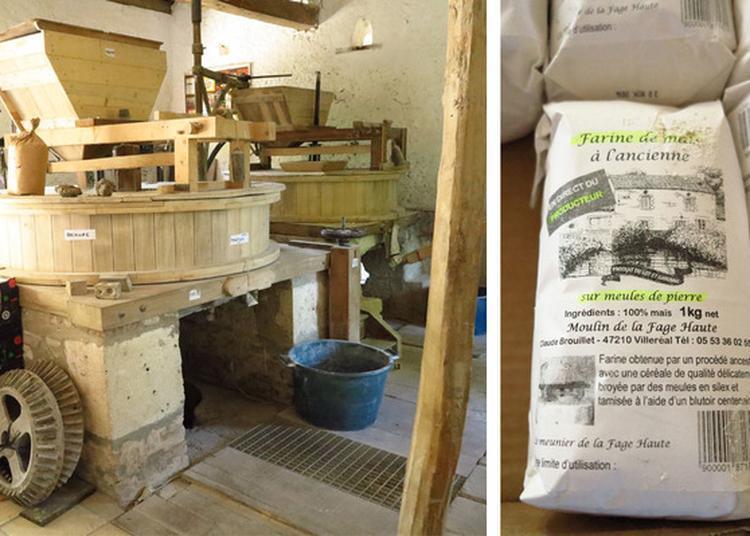 Découverte Commentée Du Moulin De La Fage-haute à Villereal