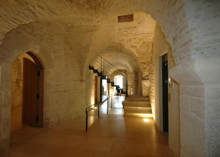Découverte Commentée Du Musée Zervos à Vezelay