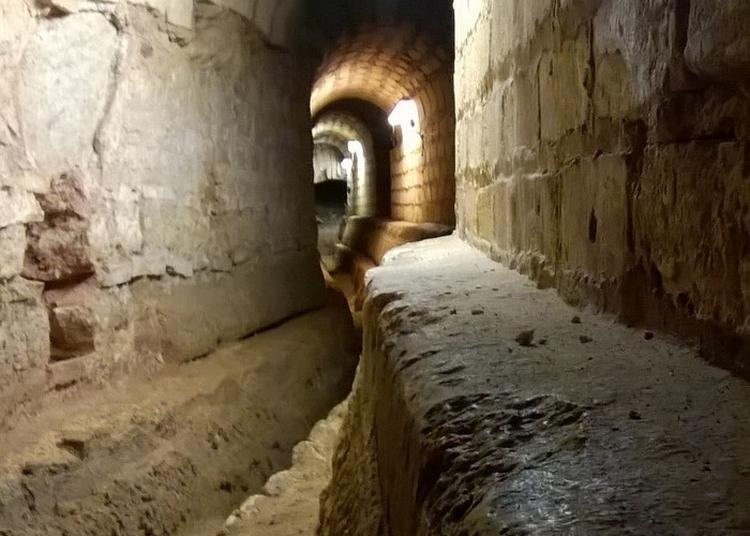 Découverte D'un Ancien Aqueduc Antique ! à Fontcouverte