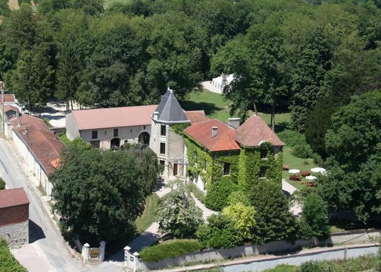 Découverte D'un Château Du Xve Fortement Remanié En 1878 à Tannois