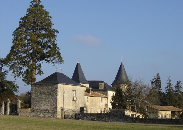 Découverte D'un Château Féodal à Limalonges