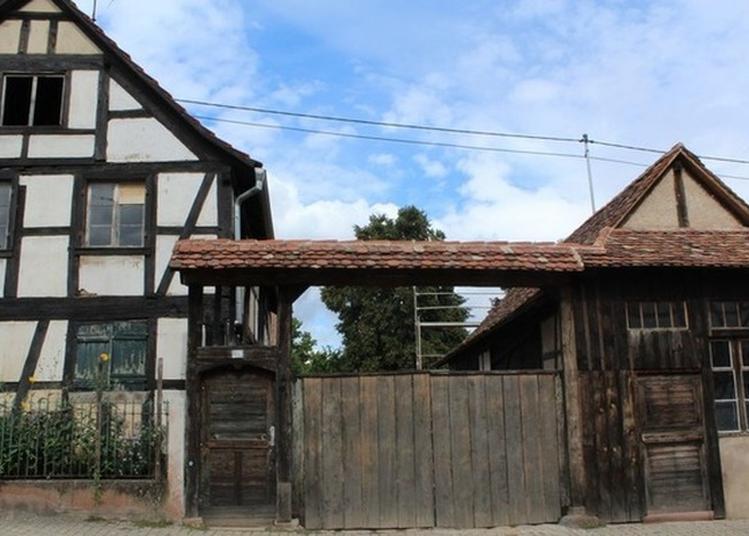 Découverte D'un Habitat Typique Du 18e Siècle à Mundolsheim