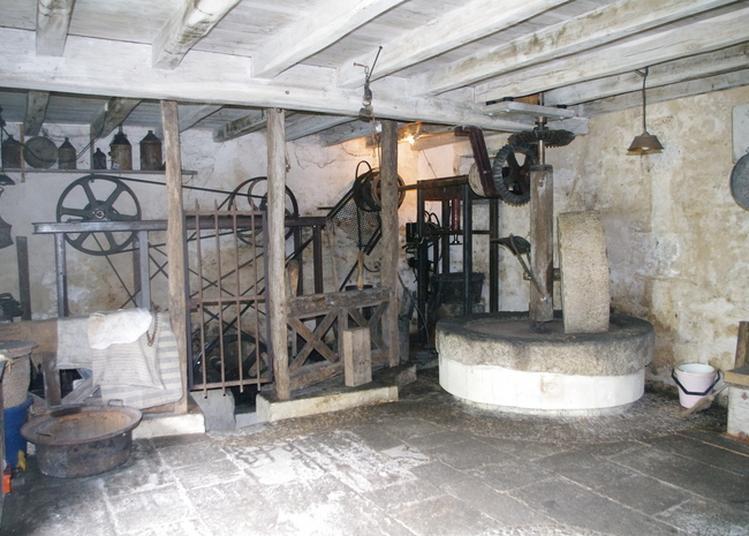 Découverte D'un Moulin à Eau Utilisé Pour La Fabrication D'huile De Noix à Saint Sulpice de Cognac