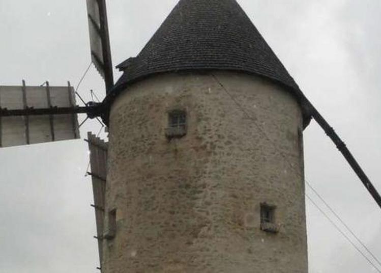 Découverte D'un Moulin à Vent Dans Un état De Conservation Remarquable à Bourcefranc le Chapus