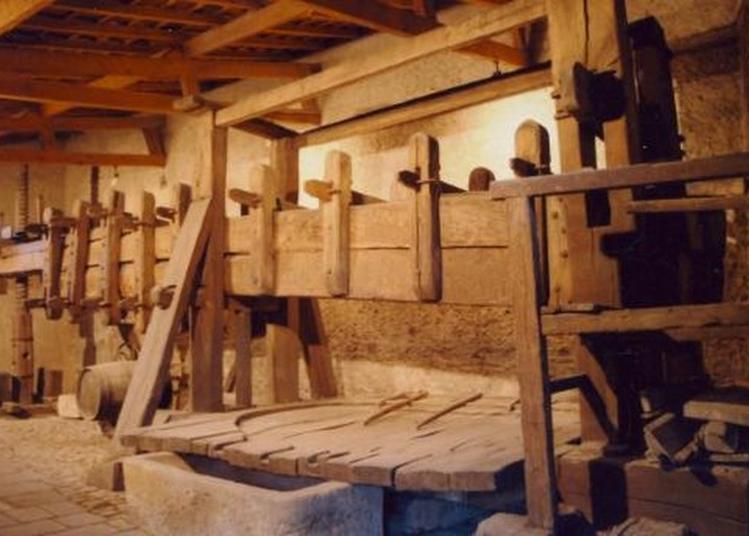 Découverte D'un Pressoir À Bascule Médiéval à Nouilly