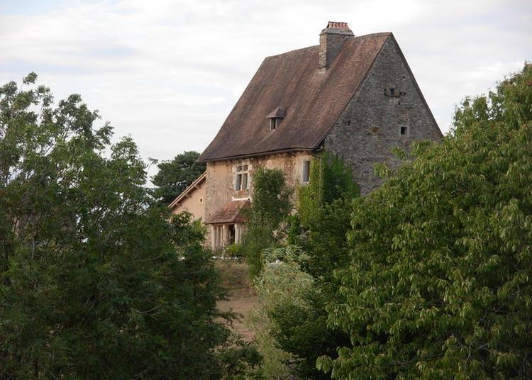 Découverte D'un Site Chargé De 900 Ans D'histoire à Saint Paul la Roche