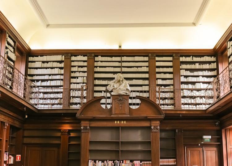 Découverte D'une Bibliothèque Aux Allures De Poudlard à Nancy