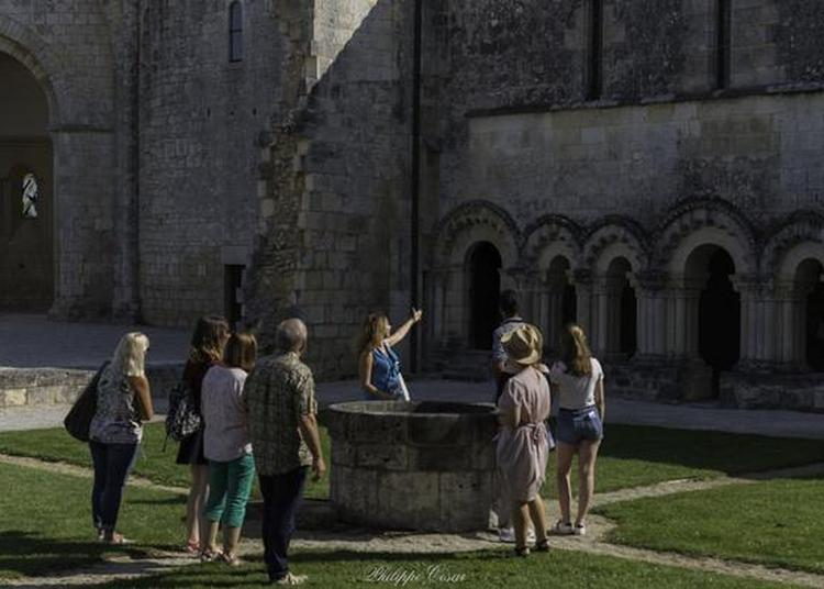 Découverte D'une Des Abbayes Les Plus énigmatiques De La Saintonge à Trizay