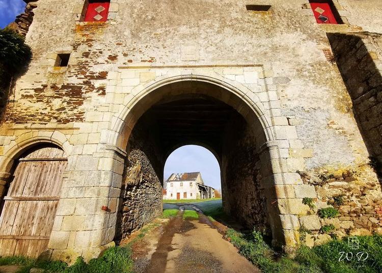 Découverte De L'ancienne Vie Au Château à Pugny
