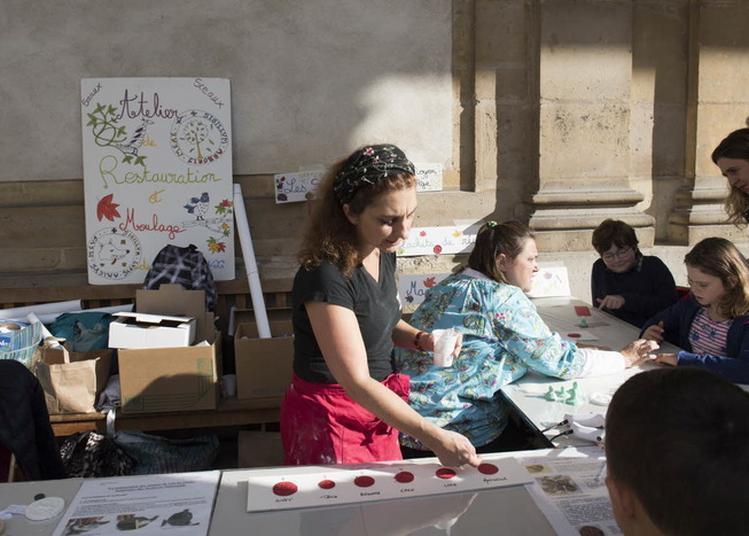 Découverte De L'atelier De Restauration Et Moulage De Sceaux à Paris 4ème