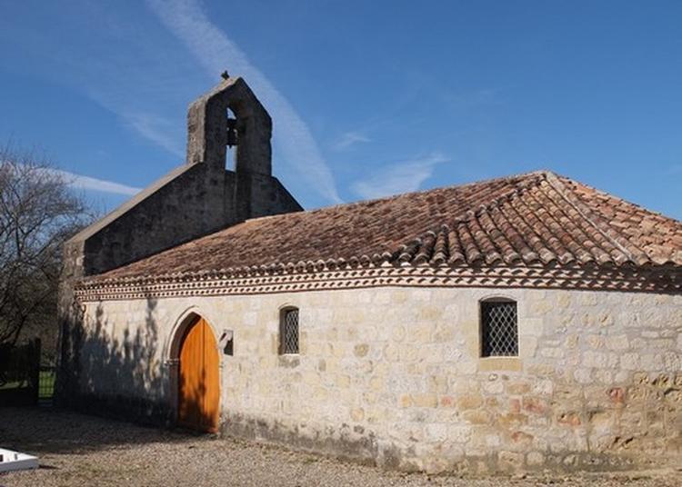 Découverte De L'église Sainte-marthe à Vares
