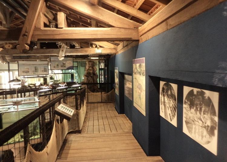 Découverte De L'exposition «mémoire De Saumon» à Saint Louis