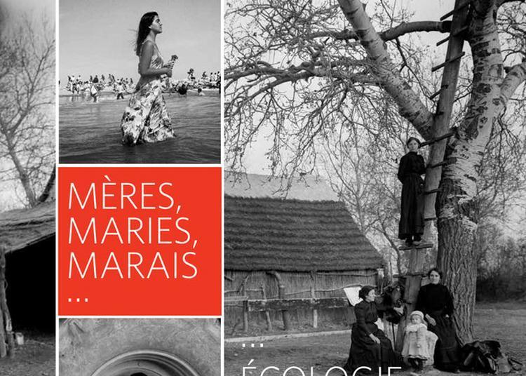 Découverte De L'exposition Temporaire « Mères, Maries, Marais, écologie D'un Mythe » à Arles