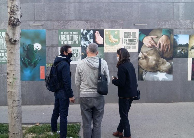 Découverte De L'exposition Urbaine Le Cantique Des Moineaux (visites Guidées Pour Le Public Adulte) à Marseille