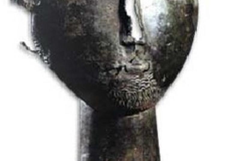 Découverte De L'oppidum Protohistorique Et Gallo-romain De Montserié à Montserie