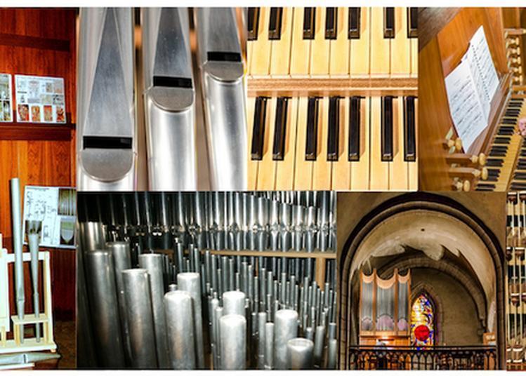 Découverte De L'orgue à Bort les Orgues