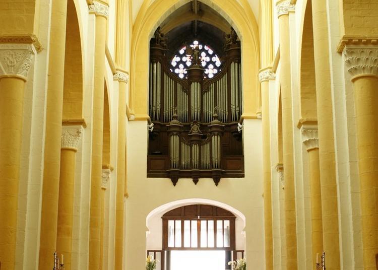Découverte De L'orgue De Clicquot. à Souvigny