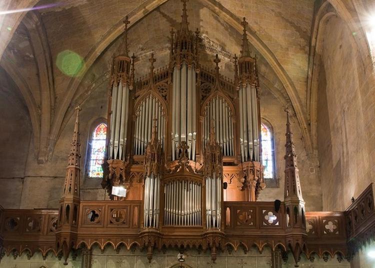 Découverte De L'orgue Et Concert à Grenade
