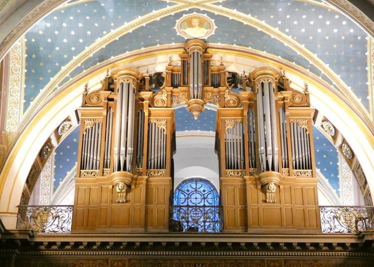 Découverte De L'orgue Historique à Albi