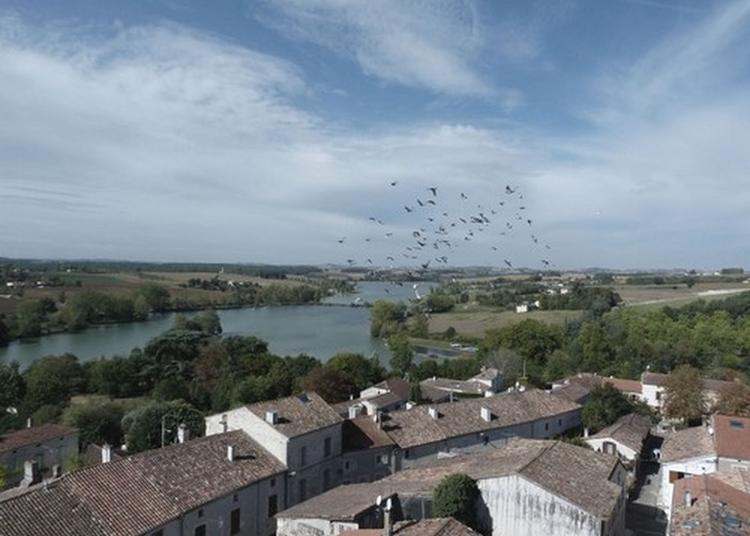 Découverte De La Bastide à Lamontjoie