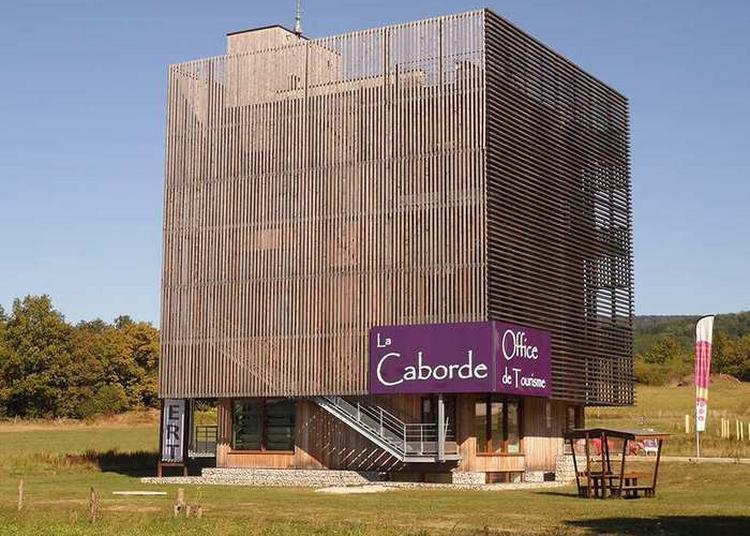 Découverte De La Caborde, Aire Viti-culturelle à Orbagna
