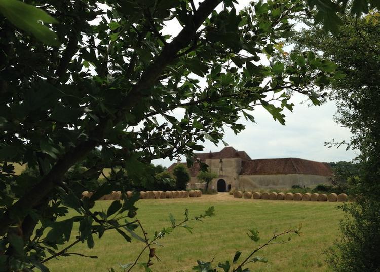 Découverte De La Chartreuse Notre-dame Du Val Saint-jean À Basseville à Pousseaux