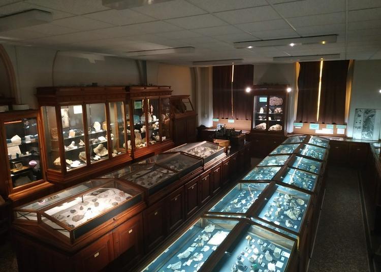 Découverte De La Collection De Minéralogie De L'institut De Géologie De Strasbourg