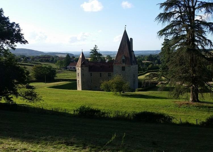 Découverte De La Fuste Par Un Artisan Fustier Dans Le Parc Du Château De Morlet