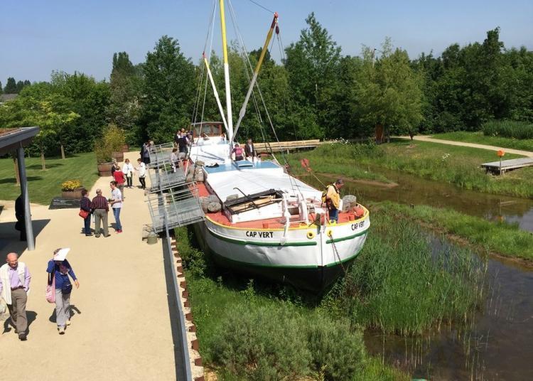 Découverte De La Marine De Loire à Montjean sur Loire