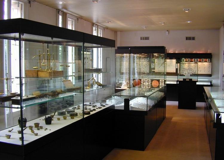 Découverte Des Collections Du Musée à Perpignan
