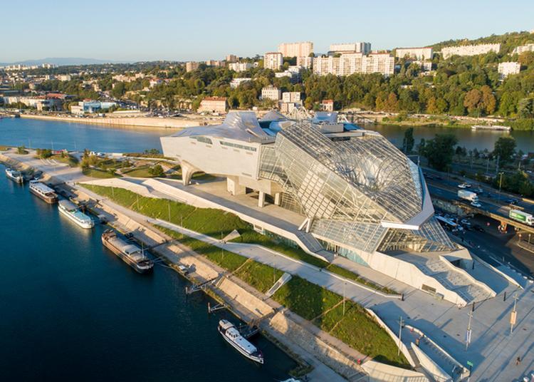 Découverte Des Collections Et Expositions Du Musée Des Confluences à Lyon