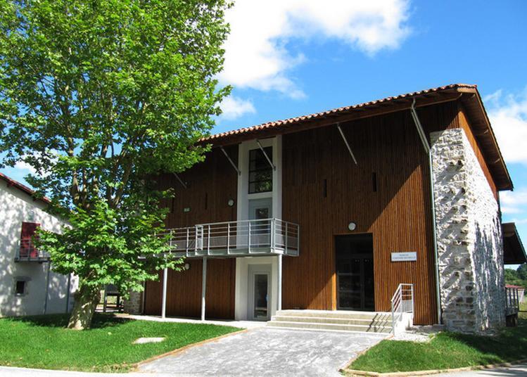 Découverte Des Collections Historiques Et Des Nouvelles Acquisitions Avec Eric Guiho, Directeur Du Musée à Bayonne
