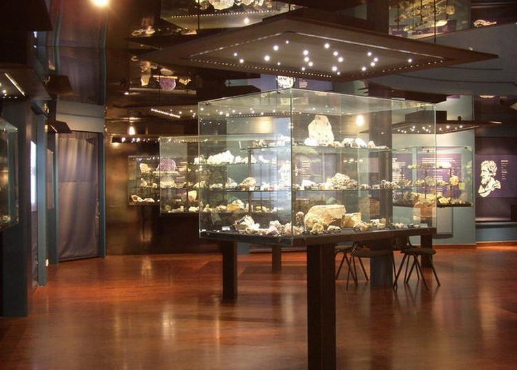 Découverte Des Collections Minéralogiques Du Musée à Ambazac