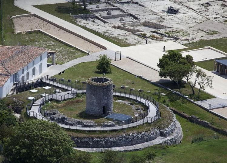 Découverte Des Musée Et Site Gallo-romains Du Fâ à Barzan