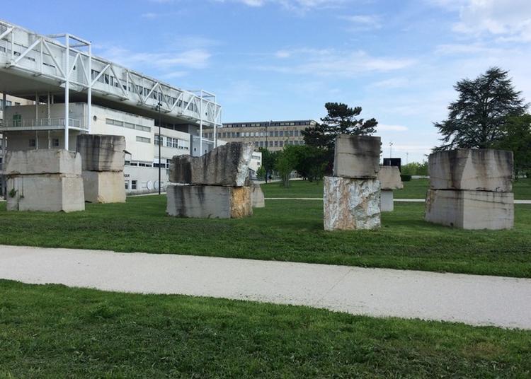 Découverte Des Oeuvres D'art - Atheneum à Dijon