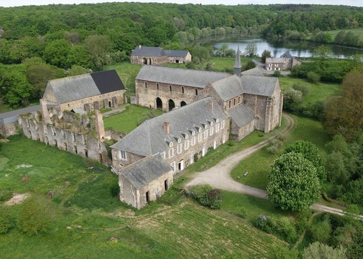 Découverte Des Plantes De L'abbaye De Clairmont  Et De Leurs Usages à Le Genest saint Isle