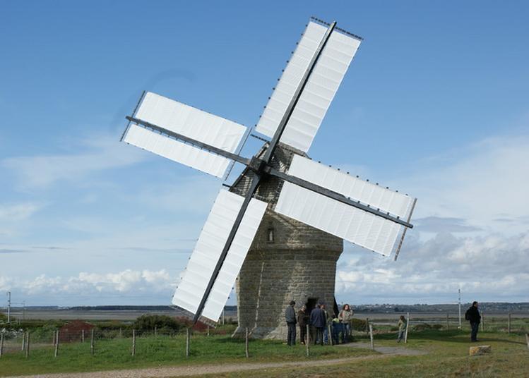 Découverte Des Secrets Du Moulin De La Falaise à Batz sur Mer