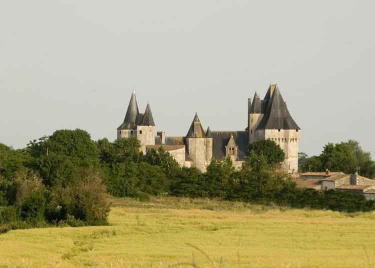 Découverte Du Château à Cherveux