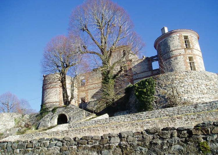 Découverte Du Château Classé Monument Historique En 2000 à Salledes
