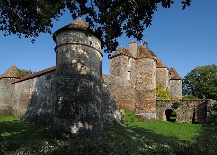 Découverte Du Château De Ratilly, Joyau De La Puisaye à Treigny